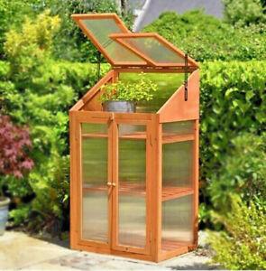 Double Door Wooden Greenhouse Transparent Poly-carbonate Glazing H120xW69xD49cm