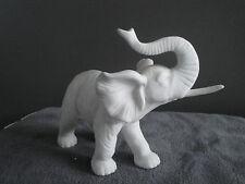Eléphant en biscuit blanc