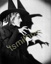 Margaret Hamilton The Wicked Witch Wizard Of Oz 8x10 Glossy Photo 006