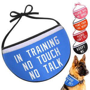 In Training Personalised Custom Dog Bandana ID Collar Mesh Reflective Pet Scarf
