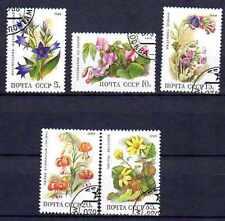 Flore - Fleurs Russie (90) série complète de 5 timbres oblitérés