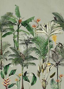 Rasch Papier Peint 539196 Club Botanique Singe Jungle Vert Coloré Murale Polaire