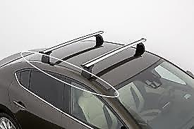 Roof moulds for Roof Racks - sedan LHS