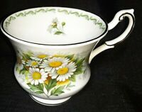 "VTG QUEEN'S Bone China ROSINA Teacup Special Flowers ""Daisy"" Made in England"