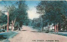 Crane Hudson Wisconsin Vine Street 1918 Postcard 20-6015