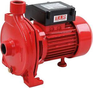 T.I.P. 30184  T.I.P. GPP 5400 M - Oberflächen Pumpe für sandiges Wa - 5.400 l/h