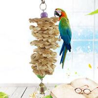 Bird Toy Parrot Bird Chew Bites Straw Ball Playing Pet Toys Budgie Practical ~
