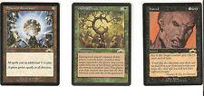 (1) MTG Exodus - OATH OF DRUIDS - Green Rare NM/Mint