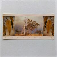 The Australian Bush NSW 1987 Steve Parish Panorama Postcard (P401)