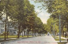 Fond Du Lac Wisconsin~Sheboygan Street Homes~Boys Ride Bikes in Road~1911 PC