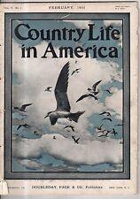 1904  Country Life February - Thoreau home at Walden; Ranchman in Pasadena