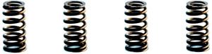 Enginetech ERV2487 Engine Valve Spring fits ford E350 5.4L V8 (SET OF 4)