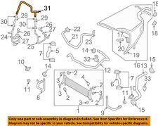 AUDI OEM 09-12 Q7 3.0L-V6 Radiator-Connector Tube 059121086Q