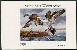 Michigan #9E 1984 État Canard Tampon Wrong Denomination Par Paul Bridgford