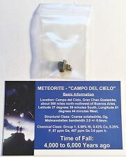 """RARE"" 1 x .5 to 2 Gram Meteorite ""Campo Del Cielo"" with Information Certificate"