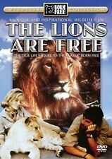 Lions Are 5020609007038 DVD Region 2