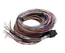 LINK g4 & g4+ 34 VIE 5m di lunghezza terminata GUAINA 'B' per wirein ECU
