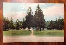 Antique Postcard The Madison Green, Madison, Ct., Unused, C1910-20 Era