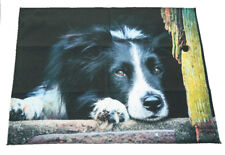 Border Collie Waiting Breed of Dog Cotton Tea Towel 100% Cotton Perfect Gift
