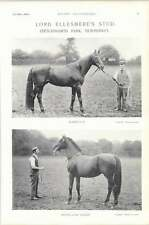 1896 Horse Race Lord Ellesmere Stud Stetchworth Park Highland Chief Windlass