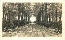 1940s Schiffs Date Garden Coachella Indio RPPC real photo postcard 1013