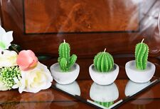 3 Pieces Cactus Candles Collection Tealight Candles NEXT Brand