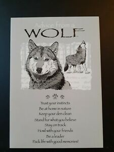 Blank Card Advice from a Wolf