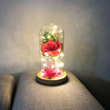 Beautiful Enchanted Rose in Glass LED Lighting Party Decor Birthday Gift B