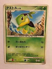 Pokemon Card / Carte Tortipouss Promo 027/DP-P