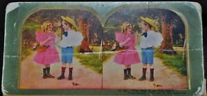 """Antique Stereograph Card - 11&12, """"You May Have Just One """"- c.1899 - 2 Cards"""