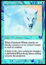Phantom Whelp X1 NM FOIL Odyssey MTG Magic Cards Blue Common