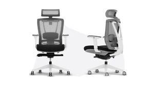 Autonomous Ergo Chair 2 ( Black / White )