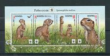 Belarus 2015 MNH Speckled Ground Squirrel WWF 4v M/S Wild Animals Fauna Stamps