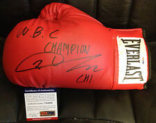 CHI IN-JIN WBC CHAMP Auto Autograph Signed Everlast Leather Boxing Glove PSA/DNA