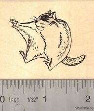 Sugar Glider in Flight Rubber Stamp H13502 WM