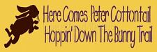 ~Item #4724 A Primitive Stencil ~ Here Comes Peter Cottontail