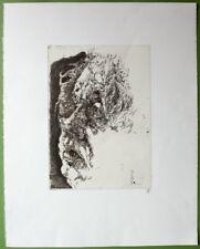 Horst Janssen Selbstportrait 1982 Radierung handsigniert
