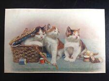 Ancienne Carte postale fantaisie chat série 8458 carte vierge