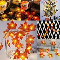 20/30 LED Lighted Fall Autumn Pumpkin Maple Leaves Garland Christmas Decor Ty