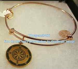 Alex and Ani Color Infusion Compass Bangle Shiny Rose Gold - Rare