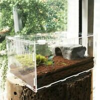 Reptile Terrarium Plastic Snake Insect Spider Tarantula Tank reptile bo Pet M2Y5