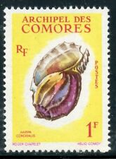 STAMP / TIMBRE DES COMORES N° 20 ** COQUILLAGES