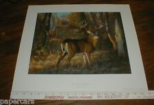 Dick Idol Deer Prairie Art SIGNED Poster Print 1997 Cabelas Bill Jordan Realtree