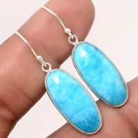Natural Arizona Turquoise 925 Sterling Silver Earrings Jewelry 9492