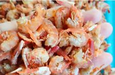Dried Shrimp,Seafood,500G 35$