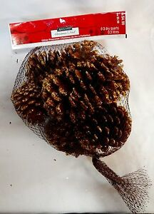 Pinecones Ashland Christmas Gold Glitter Lightly Scented Bag Full USA 45A