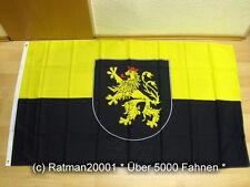 Fahnen Flagge Pfalz Wappen - 90 x 150 cm