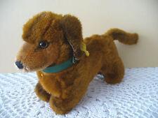 Wunderschöner Steiff Hund, Dackel Hexie Knopf, Fahne, Halsband, 22cm