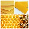10 PCS Beekeeping Honeycomb Wax Frames Foundation Honey Hive Equipment Tool
