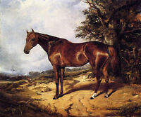 Nice oil painting arthur-fitzwilliam-tait-thoroughbred- red horse in landscape